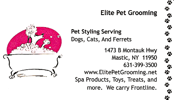 Pet Grooming Long Island Ny